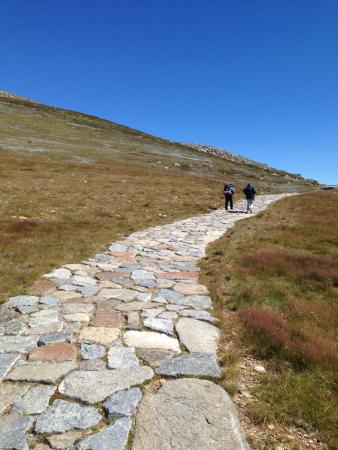 Mount Kosciuszko National Park: The walk. Loved it so so much!!