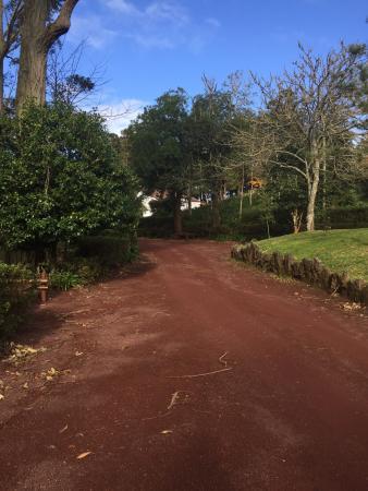Pinhal da Paz : Running trail