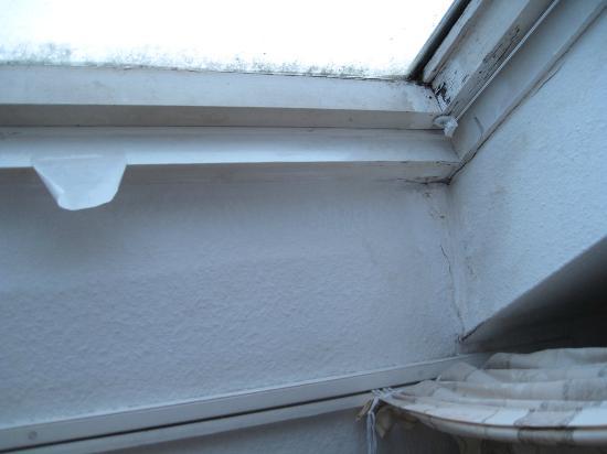 schwarzer schimmel am nicht zu ffnenden fenster picture of landgasthof porta schlitz. Black Bedroom Furniture Sets. Home Design Ideas