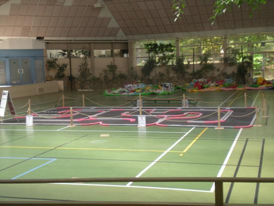 Vue piscine photo de center parcs les bois francs for Piscine verneuil sur avre