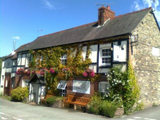 The Mulberry Inn