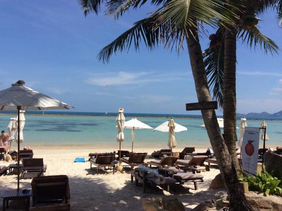 Muang Samui Spa Resort: пляж