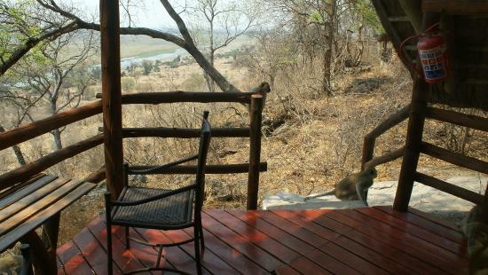 Muchenje Safari Lodge: Uitzicht vanuit de kamer