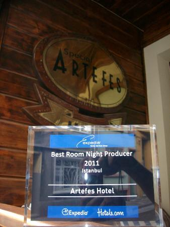 Artefes Hotel Istanbul: Hotel