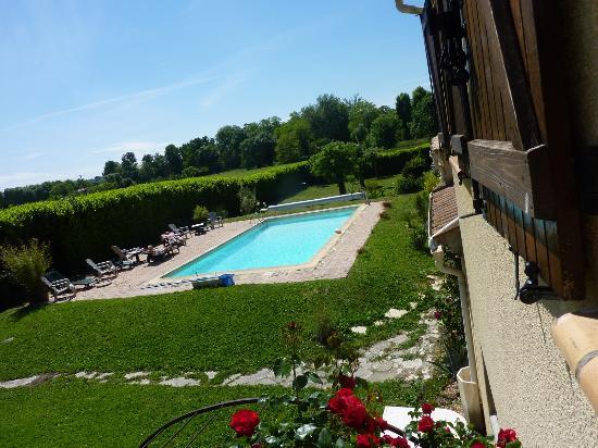 Les Palmiers De La Cite: la piscina y parte del parque