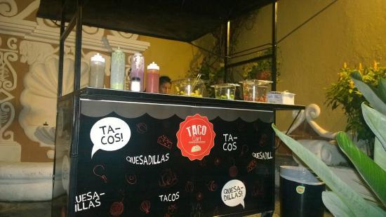 Ocelot : Tacos!