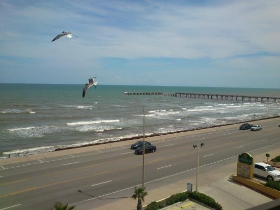 Holiday Inn Express Hotel & Suites Galveston West - Seawall: view from the the front room