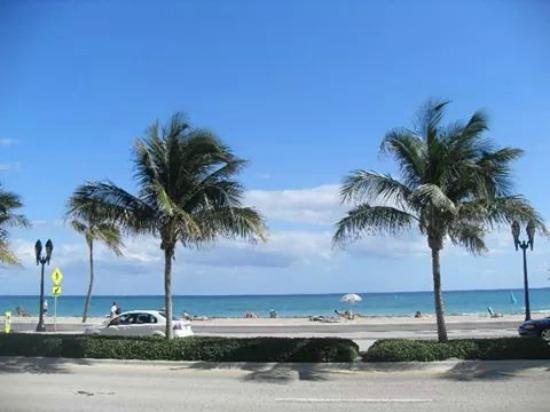 Beach Plaza Hotel: vista desde la recepcion