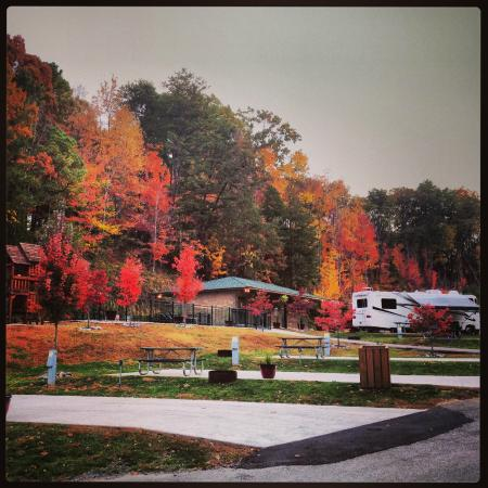 Fall Picture Of Bear Cove Village Pigeon Forge