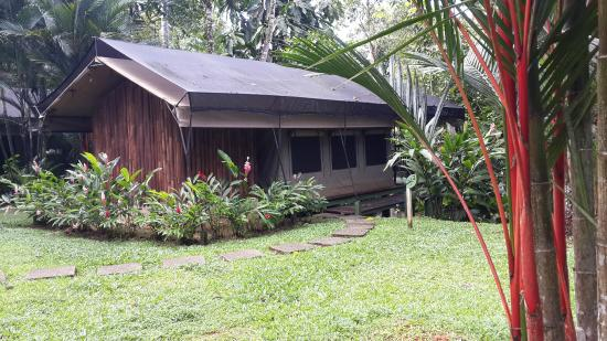 Rio Tico Safari Lodge: Tented lodge