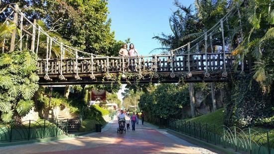 El Mundo Verde Travel Reviews