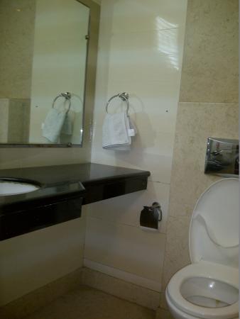Omega Residency: wash room