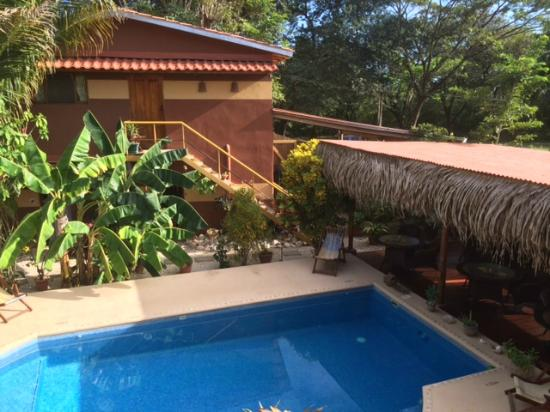 Samara Palm Lodge : View from our room (#5)