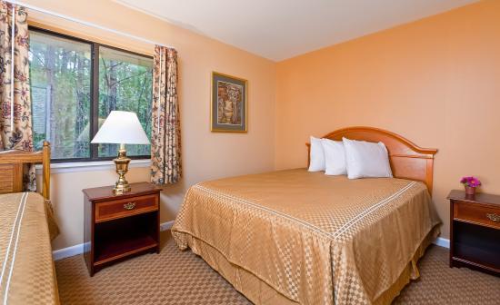Rodeway Inn 54 ̶6̶5̶ Updated 2020 Prices Amp Hotel