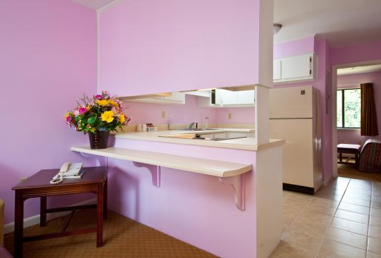 Executive Suites Inn: Pink Room for Ladies Night Out