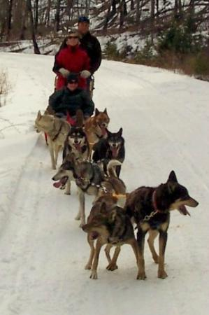 Absaroka Dogsled Treks: Wheeeee!