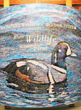 Ninigret National Wildlife Refuge and Kettle Pond Visitors Center : Mosaic in Visitor Center