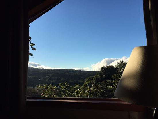 Cala Lodge: The view while setting in my bed.