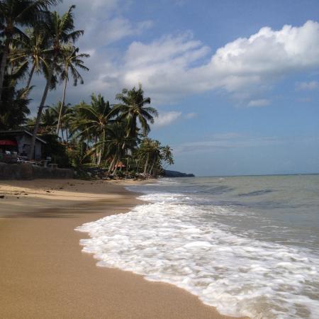 Strand by beach resort