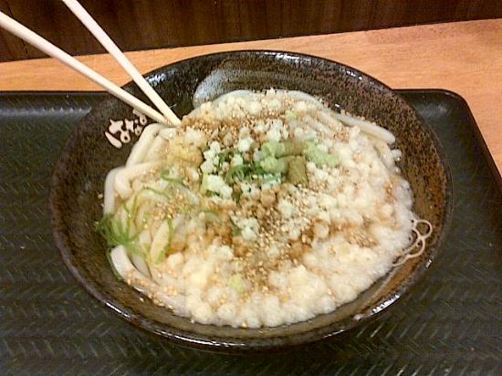 Hanamarudon Shibuya Park Dori : A bowl of 'kake udon' with tempura batter and lashings of grated ginger & wasabi