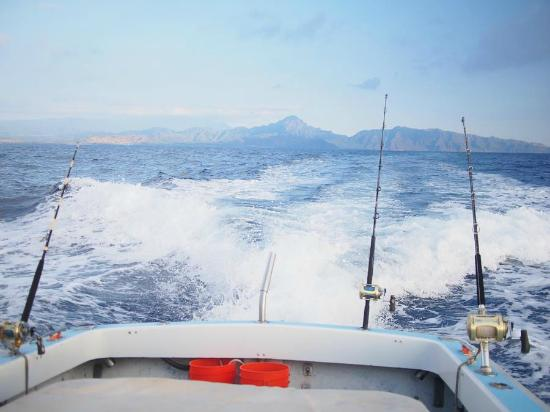 Captain Don's Sportfishing: On the way out