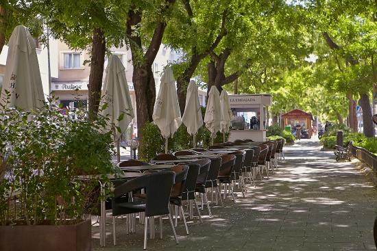 Terraza Bulevar Fotografía De La Embajada Madrid Tripadvisor