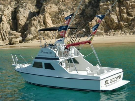 El budster salvador 39 s sportfishing charters cabo san for Los cabos fishing charters