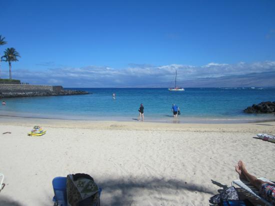 Mauna Lani Resort Golf Club Snorkeling At Beach