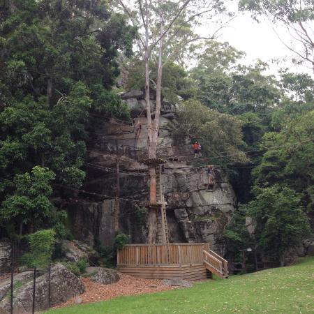 Shoalhaven Zoo : Getting ready to climb the black !