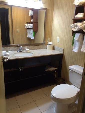 Hampton Inn Frederick: bathroom avg