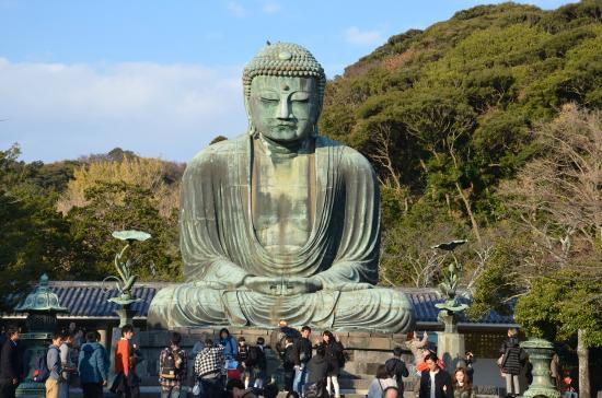 Kotokuin Temple - Shore Excursions Asia