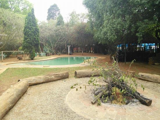 Mufasa Backpackers: Pool