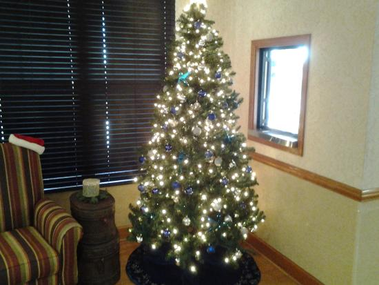 Country Inn & Suites by Radisson, Charlotte I-485 at Highway 74E, NC: Christmas tree in the lobby