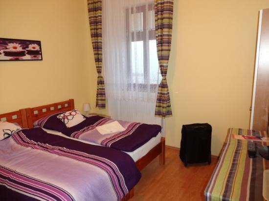 Penzion u Vlcku: 清潔な部屋です。