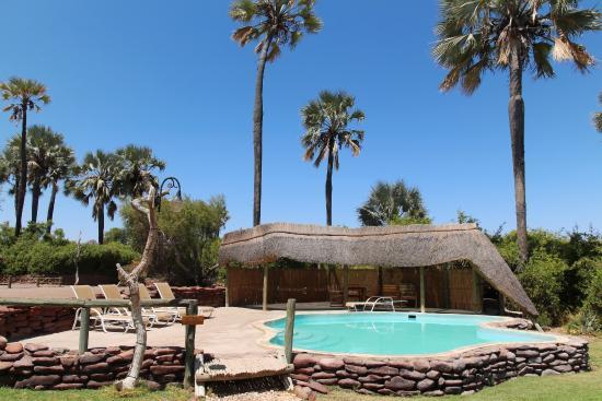 Palmwag Lodge: La piscine