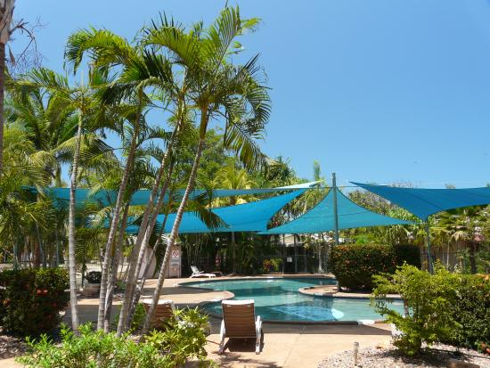 Palm Grove Holiday Resort : The Pool