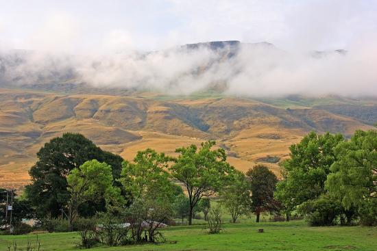 Kamberg Nature Reserve: Drakensbergen, 1 700 meter över havet