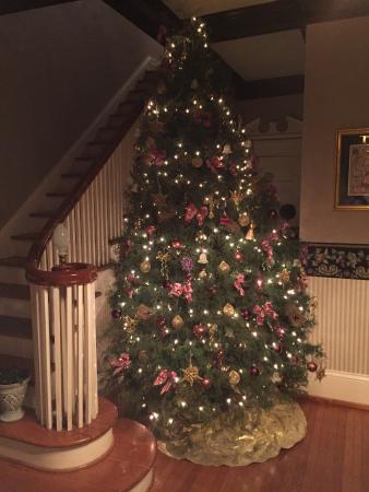 Robin's Nest Bed and Breakfast : Fantastic Christmas decor