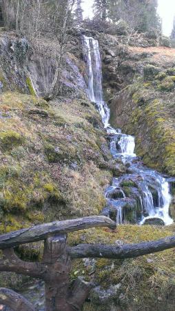 Jardin botanique Alpin de la Jaysinia : La cascade du jardin