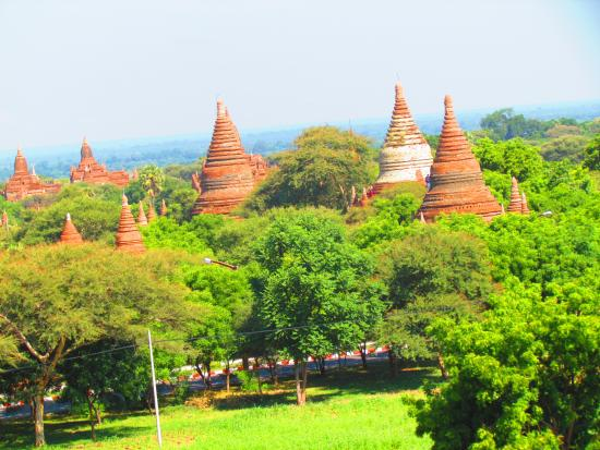 Bagan Hotel River View : the normal landscape of Bagan