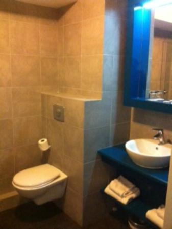 Appart'City Confort Lyon Cite Internationale: Toilettes
