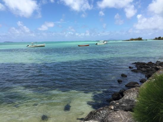 Calodyne: Sea