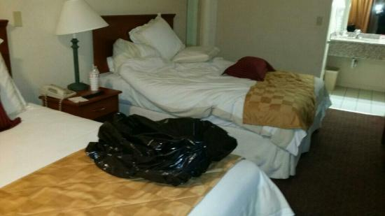 Ramada Limited San Diego/Near SeaWorld : In my room .. when I checked in.