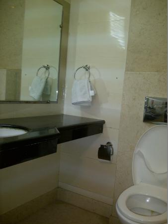 Omega Residency: Bathroom