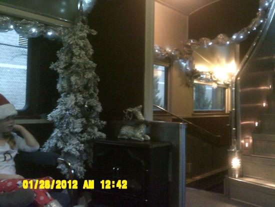 Christmas tree and fireplace in our train car. - Picture of ...