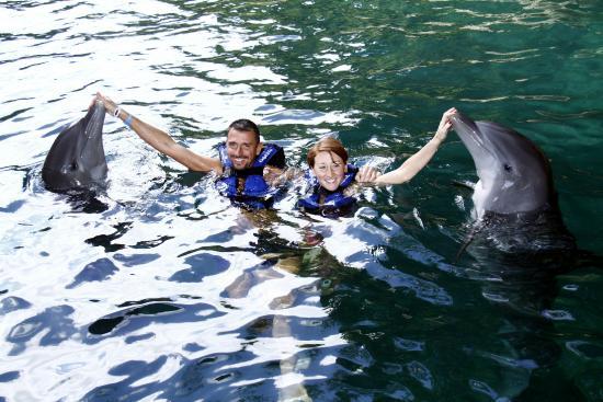 Bagno con i delfini a cayo blanco a varadero opinioni e foto