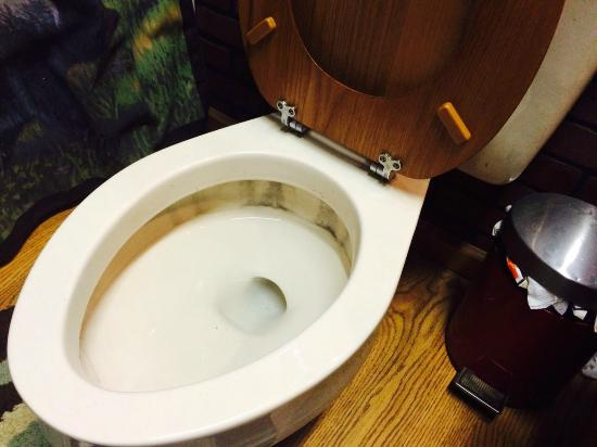 The Old Bear Bed And Breakfast: Toilet - when was this cleaned last?