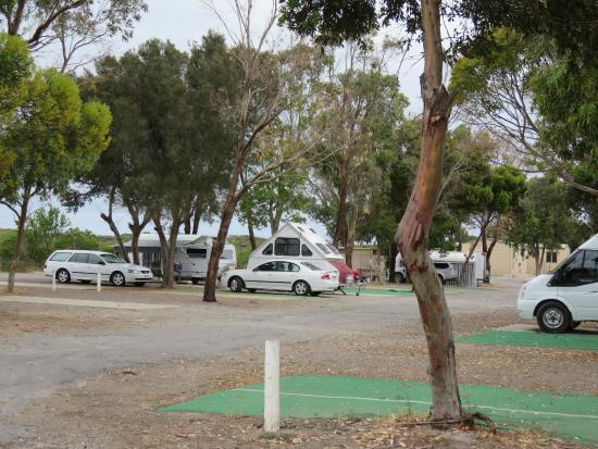 Marion Bay Caravan Park: Plenty of room in the park