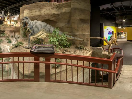 Flash flood every 30 minutes - Picture of Arizona Museum of ...