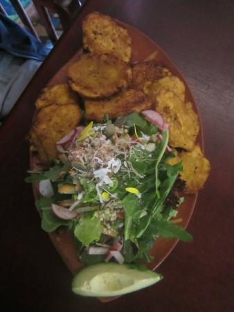 Sativa Studio Cafe: Patacones (fried plantains) with salad made fresh from the owners garden